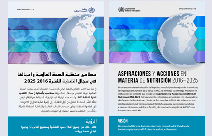 Ambition and Action in Nutrition 2016-2025